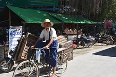 DSC_6916 (Kent MacElwee) Tags: myanmar burma sea asia southeastasia ht man bike bicycle nyaungshwe market produce mingalarmarket