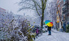 Winter beauty (MarwanYoussef) Tags: winter december snow umbrella colors colorful cold bick view vision nikon d3200 nikond3200 netherlands amsterdam dream white tree urban people awake street girl relax day