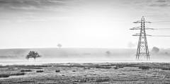 Misty Valley (PKpics1) Tags: misty warwickshire england pylon electricity tree grass valley mist landscape morning early