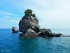 Plants Growing on the Rock (Zelle Manzano) Tags: ocean water sea tour plants trees rocks island blue travel adventure chumpon thailand