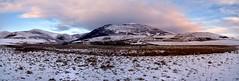 A winter landscape in Scotland. (rustyruth1959) Tags: nikon nikond5600 tamron16300mm panorama uk scotland edinburgh comiston landscape snow hills ssc saturdayselfchallenge winter grass mountains clouds sky walls fields peak