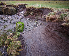the dark river bank (DMC Photogallery) Tags: riverkent riverbank lines microlandscape