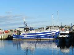 Shades and Reflections, Buckie Harbour, Moray Coast, Feb 2018 (allanmaciver) Tags: shades reflections buckie harbour moray coast scotland north blue white clear sky weather february large small water admire enjoy wander allanmaciver