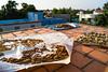 Indien India lust-4-life lustforlife Blog Waisenhaus Orphanage.jpg (28) (lustforlifeblog) Tags: india indien waisenhaus orphanage pondicherry puducherry travel blog reiseblog lust4life lustforlife