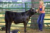 Cowgirl (Scott 97006) Tags: girl cow young fair competition coral cute