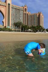 Rainy day in Dubai (domit) Tags: dubai uae rainy day thepalm atlantis beach isaac fish hunt watching