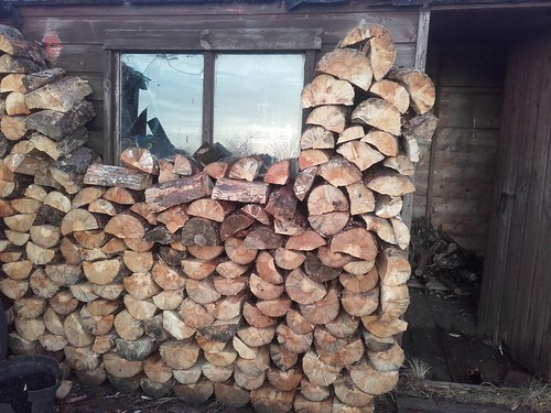 Woodpile - pine in a sunwall.