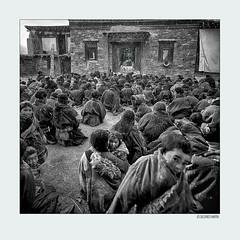 Believers008 (siggi.martin) Tags: tibet tibeter tibetans tibetischesneujahr tibetannewyear asien asia tradition beten pray osttibet easterntibet menschen people kind child kinder children kloster monastery buddhismus buddhism schwarzweis blackandwhite fest festival pilger pilgrims glaube belief viele many kalt cold kälte coldness chill schneetreiben snowflurry tibetisch tibetan losar sichuan hingebungsvoll devoted gedrängt closely