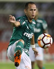 Junior Barranquilla x Palmeiras (01/03/2018) (sepalmeiras) Tags: copalibertadores juniorbarranquilla metropolitano palmeiras sep juniorbarranquillacolxpalmeiras01032018 aguerra