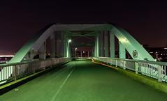 #16 Easy (tokyobogue) Tags: tokyo japan ukimafunado nikon nikond7100 d7100 tamron1024mmf3545diiivchld tamron night evening bridge longexposure 365project