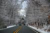 samsebeskazal-2124.jpg (samsebeskazal) Tags: winter newjersey ringwood