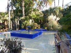 Oase-oasis (Anke knipst) Tags: marrakesch marokko morocco botanischergarten garten garden kaktus kakteen cactus cacti blau blue yvessaintlaurent jardin majorelle jardinmajorelle brunnen fontain