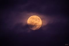 (iMalik1) Tags: moon ambiance waxinggibbousmoon bluehour moonsurface space glow atmosphere sunset photooftheday waxinggibbous canoneos600d makeitealing snappedinealing ealing nighttime getwestlondon canonuk londonphotographer night london nightsky mycanon potd radiant astrophotography