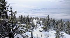 A View From Puzzle Mountain, Maine (jtr27) Tags: dscf6611e jtr27 fuji fujifilm fujinon xe2s xe2 xtrans xf 1855mm f284 rlmois puzzlemountain graftonnotch graftonlooptrail sundayriver hike hiking winter snow maine newengland
