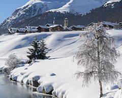 Saroch da Luigion (quanuaua) Tags: ifttt 500px frozen winter snow snowdrift snowy mountain peak range snowcapped valtellina cold temperature livigno water san rocco italy