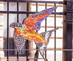 Glass Birds (vernonbone) Tags: 2018 february insects macro mosaicart nikond3200 sigma105mm toronto winter