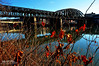 Fort Wayne Railroad Bridge (Hi-Fi Fotos) Tags: fortwayne railroad bridge pittsburgh pennsylvania allegheny river chicago railway iron lattice truss girder americanbridgeco doubledeck steel sigma 18250mm nikon d5000 hififotos hallewell urban industrial rustbelt historic water calm reflection