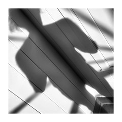 Apparition (GR167) Tags: sensualbw sensual selfnude reflection bw abstract monochrome selfportrait