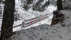 nieve para despedir febrero (ipep) Tags: anoia neu nevada snow train catalunya cataluña