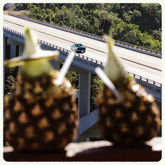 IMG_0027 (giltay) Tags: bacunayaguabridge puentedebacunayagua viablanca car bridge pineapples piñacolada straw cuba 1955 ford fairlane