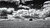 Twins... (Ody on the mount) Tags: anlässe bäume em5 felder filmkorn omd olympus pflanzen schwäbischealb wanderung wolken bw clouds monochrome sw trees römerstein badenwürttemberg deutschland de