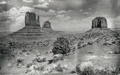 Monument Valley, Utah (Thomas Hawk) Tags: america monumentvalley usa unitedstates unitedstatesofamerica utah vintage postcard fav10 fav25