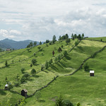 The Romanian Countryside thumbnail