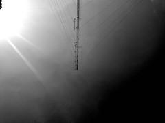 Comunicación profunda, como caída del cielo. (a.moncadaolmos) Tags: noir sjr picoftheday antennas qro streetphotography instagrammer instagram street mexico instagood comunication sanjuandelrio photostreet sun queretaro streetphotoqro vsco streetphotographybw instagrammers mx