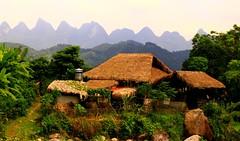 ha giang homestay (hmong135) Tags: hagiang vietnam homestay rice village
