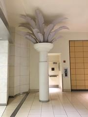 Burdines Palm Tree Macy's Aventura Mall (Phillip Pessar) Tags: burdines palm tree macy's aventura mall department store florida