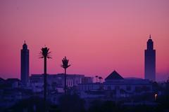 Casablanca awakening (erdal.aktaran) Tags: twilight dawn travel view mosque city casablanca morocco