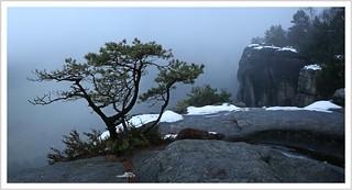 Winter-Tristesse...