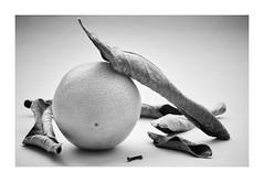 Nature morte (GlebLv) Tags: lemon sony a6000 minoltaaf10028macro stilllife bw nb monochrome naturemorte