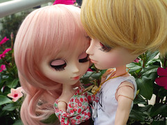 Happy Valentine's Day! (♪Bell♫) Tags: pullip alice du jardin taeyang romantic mad hatter susanne rosenthal roy darden de petit valentines day groove doll