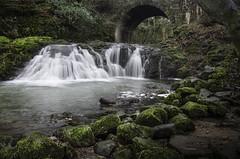 Arbirlot Waterfall (daedmike) Tags: scotland angus stream burn arbirlot arbroath bridge tunnel rocks moss longexposure nature waterfall