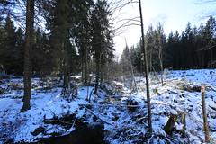 IMG_0248 (rudolf.brinkmoeller) Tags: eifel wandern natur eifelsteig