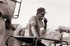 ontario tobacco harvest (cpt. willard) Tags: 1988 canada ontario ontarioyourstodiscover burford primingmachine tablegirls boatdriver kiln brantcounty farm summer sandwich coffee break labatts priminggang