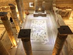 Zeugma Mosaic Museum / Turkey (busegüngör) Tags: photographer photo traveller travel museum turkish greek mosaic roman rome architecture ancient history turkey