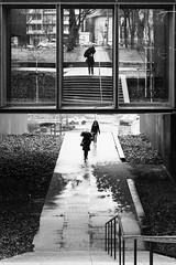 La symétrie du parapluie (Nathalie Falq) Tags: aveyron france midipyrenees occitanie projet52 rodez architecture autoportrait formatportrait monochrome musée noiretblanc paysage paysageurbain personnage personne selfie fujifilmxt2 xf35mmf14r fujifilm