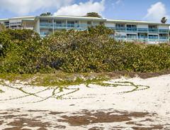 2017-04-21_11-26-41 Mount Vernon (canavart) Tags: sxm fwi caribbean stmartin stmaarten sintmaarten island tropical orientbeach