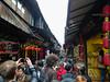 P1130680-2 (Simian Thought) Tags: xitang china watertown