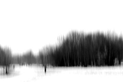 March 2nd (GillK2012) Tags: march 2018 snow nature trees intentionalcameramovement slowshutterspeed impressions icm abstract bw blackandwhite monochrome