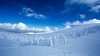 Snow rime (Masa_N) Tags: bluesky trees winter snowrime zao yamagata clouds snow japan mountain