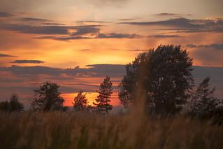 Sunset again. MMXV