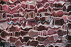 wiggly bricks (Francis Mansell) Tags: glass distorted distortion abstract brick wall house window frosted distorting mortar nikanalogefexpro2 texture pattern wiggly lines