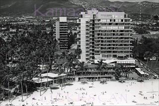 Hawaiian Village Birdseye 1950s