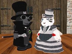 New Clothez! (Teal Freenote) Tags: tealfreenote wolfhartnell tiny tinies raglanshire sl virtualworld