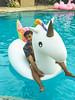 Aureo Beach Resort San Fernando La Union (70 of 85) (Rodel Flordeliz) Tags: sanfernando ilocosregion philippines beach resort launion ilocos elyu sanjuan surfing travel 5starresort amenities room