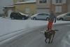 Cani-ski (Michel Seguret Thanks for 11,6 M views !!!) Tags: france languedoc herault sete hiver winter inverno invierno mer mar mare sea see neige schnee snow nieve etang pond michelseguret nikon d800