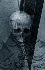 No R.I.P. (Michschnei) Tags: dark death skull skeletron disturbing bones rip black grunge
